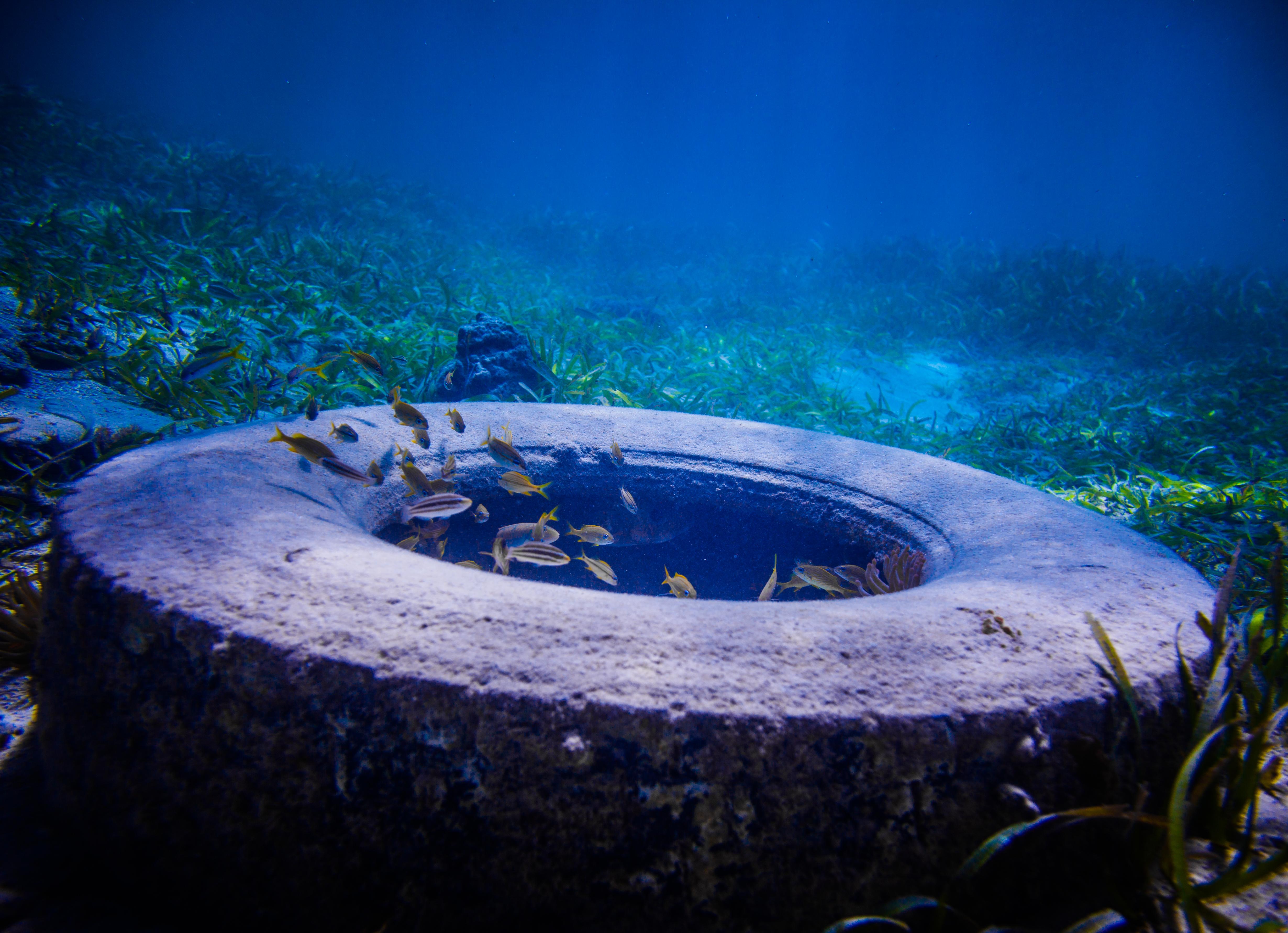 Tire Found Underwater