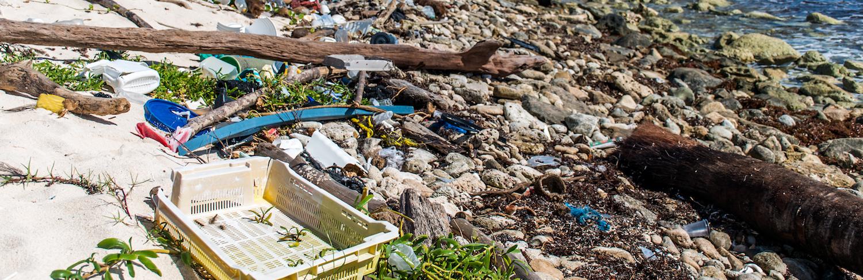 plastic debris on the beach