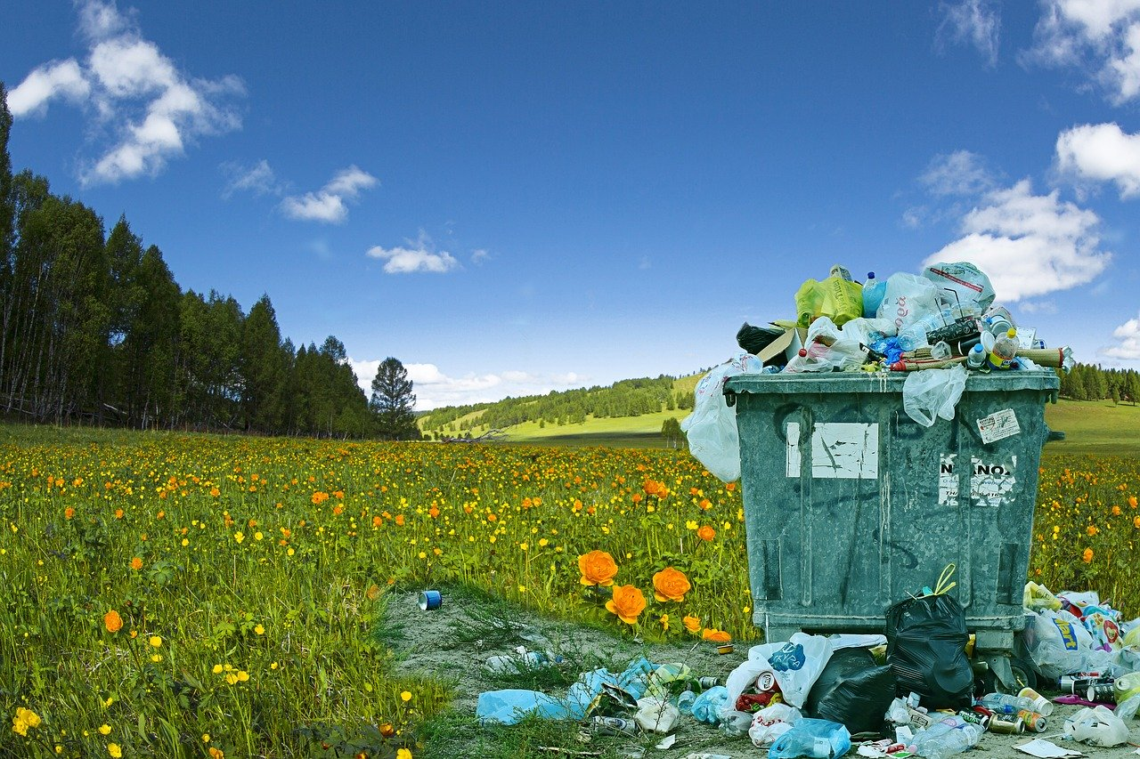 improper disposal of waste with mountain background