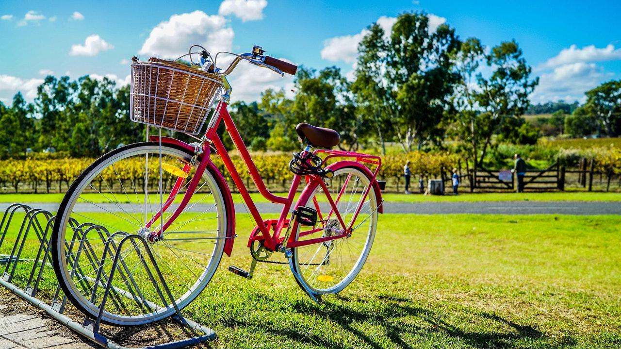 bike parked on a park