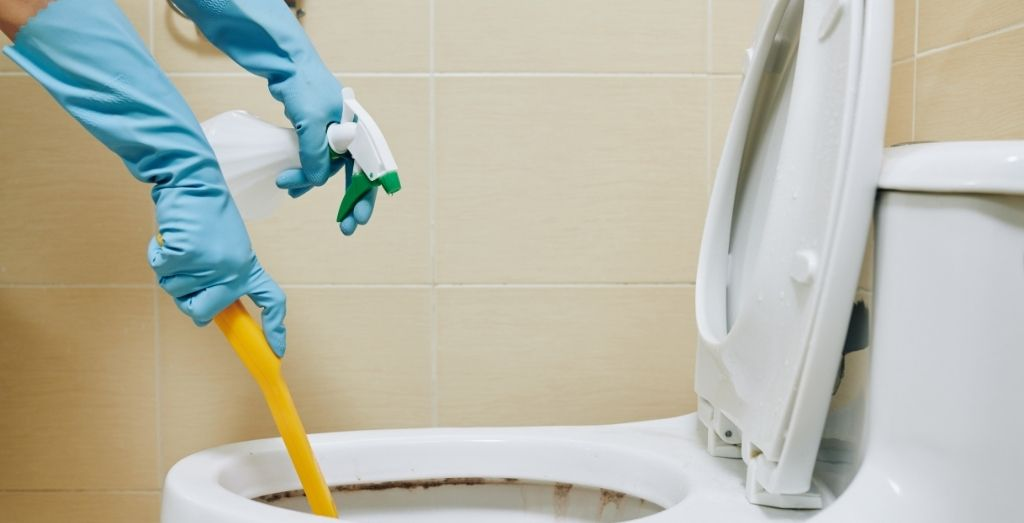 Person cleaning toilet